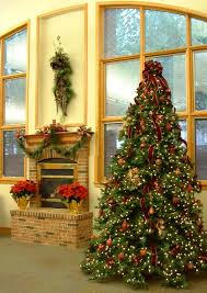 beautiful christmas tree decorations with outdoor christmas tree home design 81 outstanding outdoor christmas tree decorationss