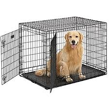 Dog Crate With Bathroom by Amazon Com Midwest 42