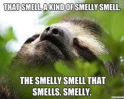 Sloth Meme Maker - smelly sloth weknowmemes generator