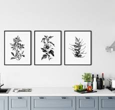 black and white kitchen framed pictures set of three black and white plants gallery wall kitchen
