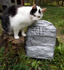diy duck tape tombstone makes fun halloween project our family