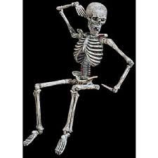 poseable skeleton posable skeleton props fright catalog i polyvore