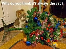 Christmas Cat Memes - animals and christmas funny animal meme collection 14 pictures