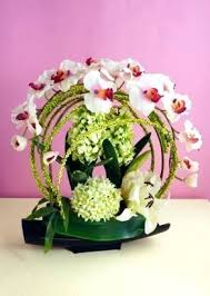 flowers for mothers day spring unusual flowers for delivery uk unusual flower arrangements