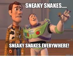 Sneaky Meme - sneaky snakes sneaky snakeseverywhere com sneaky sneaky meme on me me