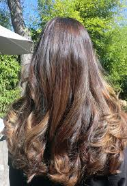 67 best caramel highlights images on pinterest hairstyles