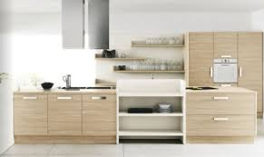 White Modern Kitchen Cabinet Idea Of The Day Black And Kitchens - Modern wood kitchen cabinets