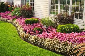 garden ideas flowerbed of colorful flowers against wall with
