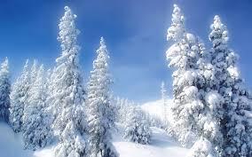winter backgrounds scene canada wonderland winter background