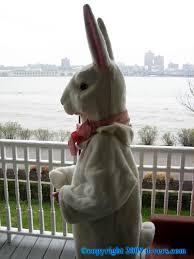 Macy S Easter Decorations by Macy U0027 U0027s Parade Rabbit Costume Original 1930s Mint Shop Online