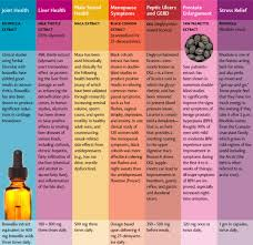 Ultimate Herb Guide Amazing Wellness Magazine The Vitamin Shoppe
