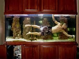 your own aquarium decor