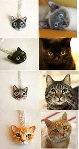 urban cat ring holder images 847 best cats 2 images cats cat art and crazy cats jpg