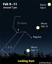 Bright Light In Western Sky This Week U0027s Sky At A Glance February 10 U2013 18 Sky U0026 Telescope