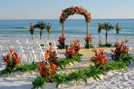 tropical themed wedding tropical themed wedding