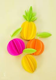 best 25 fruit gifts ideas on citrus fruits orange