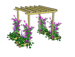 Plants For Pergolas by Build A Raised Bed For Your Garden