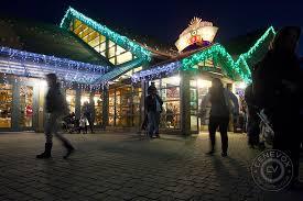 denver zoo lights brighten the night