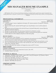 executive resume pdf resume format for mis profile globish me