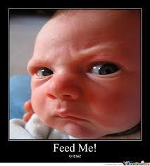 Feed Me Seymour Meme - feed me meme feed me human make a meme 25 best memes about feed me