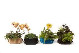 flower garden layout plans garden design ideas in zimbabwe pdf idolza