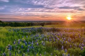 Texas scenery images Colors of texas heart of texas blog jpg