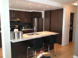 best finish for kitchen cabinets best finish for kitchen cabinets wood veneer cabinets wood veneer