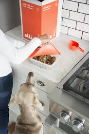 Healthy Kitchen Dog Food by Ollie New Startup Makes Safe Healthy Pet Food Business Insider