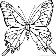 detailed butterfly coloring pages for adults coloring pages of a butterfly butterfly printable coloring pages