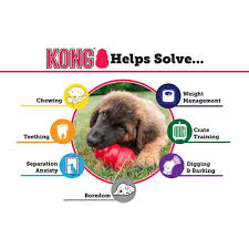 amazon com kong puppy kong toy small assorted pink blue pet