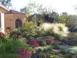 Backyard Xeriscape Ideas Portfolio