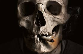 skull and crossbones images pixabay free pictures