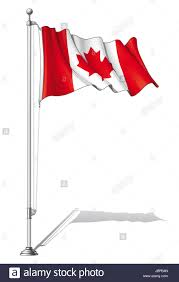 vector illustration of a waving canadian flag fasten on a flag