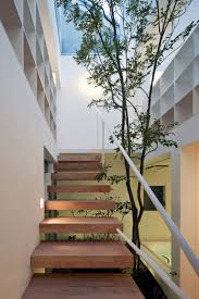 furniture wooden indoor staircase white wall tree indoor garden