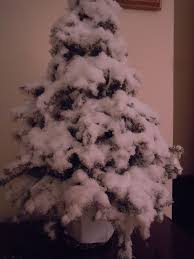 best 25 artificial snow ideas on white