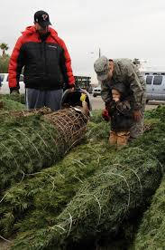 trees for troops delivers christmas trees to nellis creech airmen