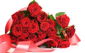 wallpaper flower red rose roses wallpaper rose floral scraps flower red roses 618102
