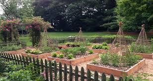 raised bed gardening u2013 coast of maine organic products