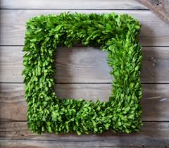 boxwood wreaths preserved boxwood wreaths mills floral company