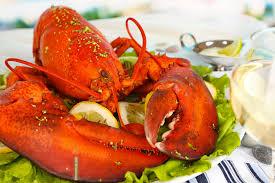 comment cuisiner un omar homard vs langouste le comparatif qualité prix fish fiches