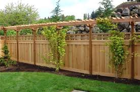 Backyard Fence Ideas Privacy Fence Ideas For Backyard With Image Of Privacy Fence