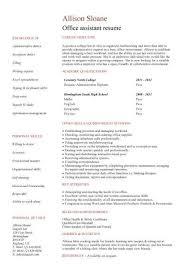 Dental Receptionist Resume Skills High Grad Sample Resume Free Essay On Anne Schraff Office