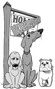 dogs also losing their homes in foreclosure sucka free city