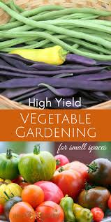 the secrets to high yield vegetable gardening in small spaces