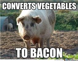Bacon Memes - vagetable to bacon by shadowgun meme center