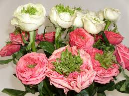 san francisco flower delivery hoogasian flowers rive gauche and green eye roses san francisco