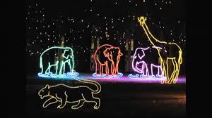Zoo Lights Coupons by Denver Zoo Lights Happy New Year 2013 Youtube