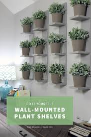 Wall Mounted Herb Garden by Wall Mounted Plant Shelves Diy Plant Shelves Faux Plants And