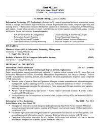 sample resume of it sample professional resume format sample