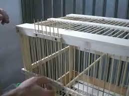 uccelli in gabbia costruzione gabbia uccelli in legno